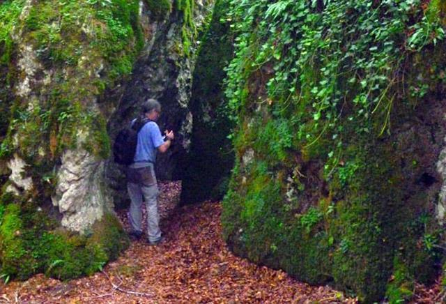 Ruta al bosque encantado de urbasa artea casas rurales bel stegui navarra - Casa rural el bosque navaconcejo ...