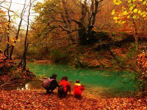 Nacedero Urederra en otoño con hojas caídas,aguas azul turquesa