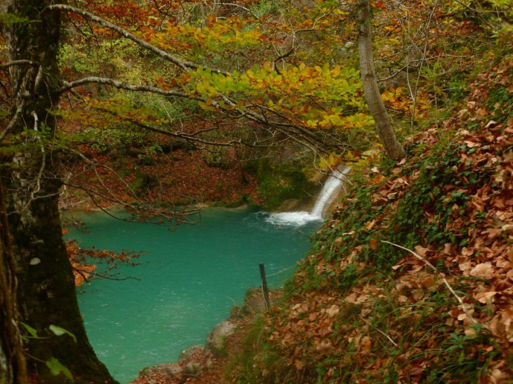 Nacedero del Urederra en otoño con el agua azul turquesa y las hojas del hayedo amarillas naranjas.