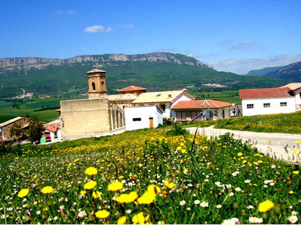 Valle de Allín floridos
