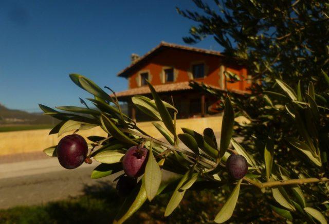 T.Estella Navarra Casa rural cerca del trujal Mendía